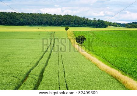 Rural Lansdscape. Germany