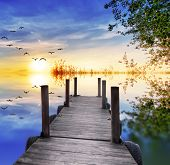 stock photo of pier a lake  - Pier under the tree Lake - JPG