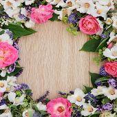 image of elderflower  - Summer flower border over light oak background - JPG