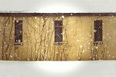picture of forlorn  - Yellow abandoned building on a snowy day with boarded up windows and vines - JPG