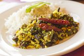 pic of okras  - Indian vegetarian fried okra with basmati rice - JPG
