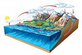 picture of transpiration  - Vector illustration of water circulation in nature - JPG