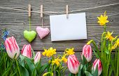picture of clotheslines  - Message and hearts on the clothesline with spring flowers against wooden background - JPG