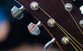 picture of pegging  - A close up of the tuning pegs of an acoustic guitar - JPG