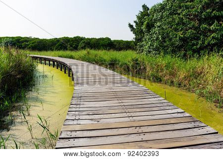 Wooden walkway over the river