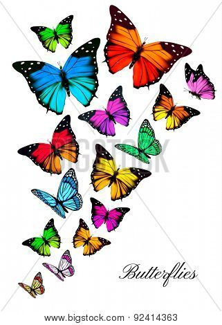 Background with colorful butterflies. Vector.