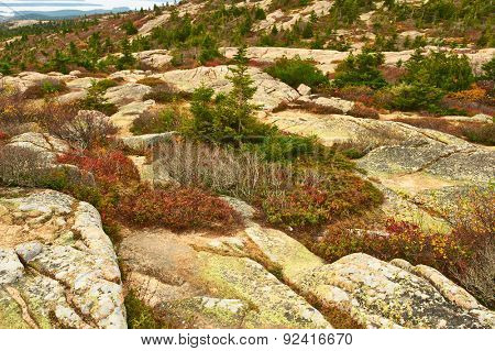 View from Caddilac Mountain in Acadia National Park, Maine, USA.