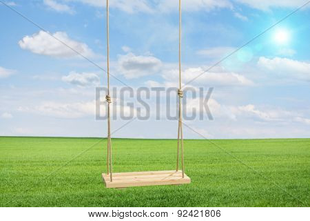 Wooden swing hanging on a couple of ropes in a green meadow shot on a beautiful summer day
