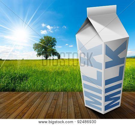 Milk Beverage Carton In Countryside