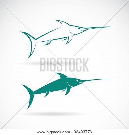 Vector Image Of An Sailfish On White Background