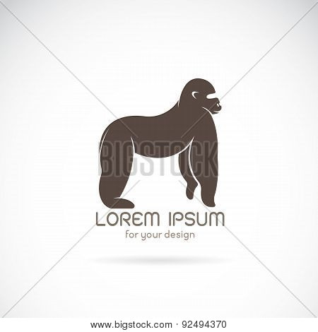 Vector Image Of An Gorilla Design On White Background