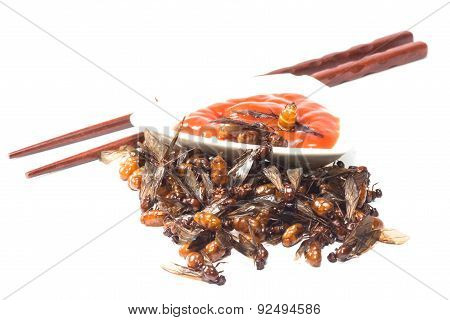 ried ant - fried  subterranean ants with chili sauce