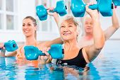 picture of gymnastics  - People young and senior in water gymnastics physiotherapy with dumbbells - JPG