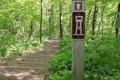 pic of observed  - Sign showing the way up the stairs to an observation tower - JPG