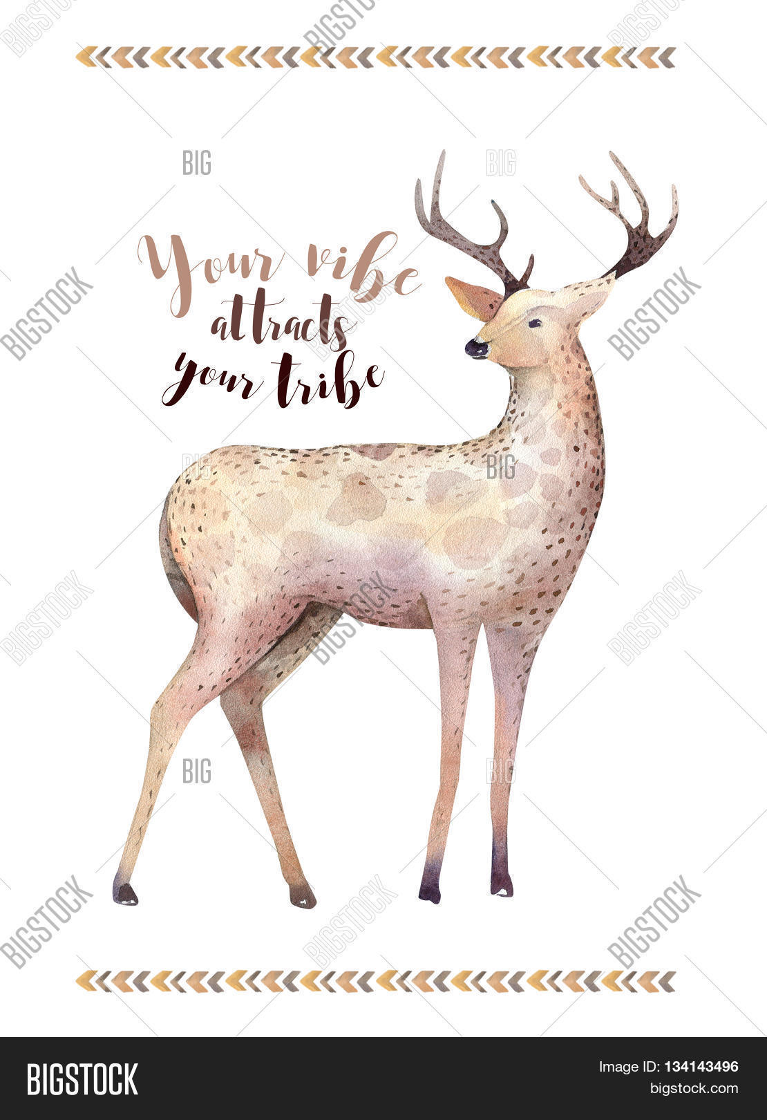 hindu single men in white deer White deerskin was the best material to use in a wedding dress, and the best white deer skin came from the albino deer blue jay went to his beloved, whose name was bright moon i will return with your bride price in one moon, and we will be married.