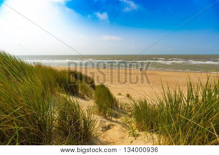 Dunes At Belgian North Sea Coast Against Cirrus And Stratus Clouds And Reed Grass, Near De Haan, Bel