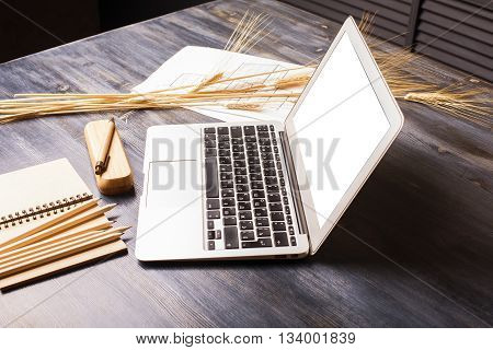Creative designer desktop with blank white laptop screen stationery wheat spikes and construction sketch. Mock up