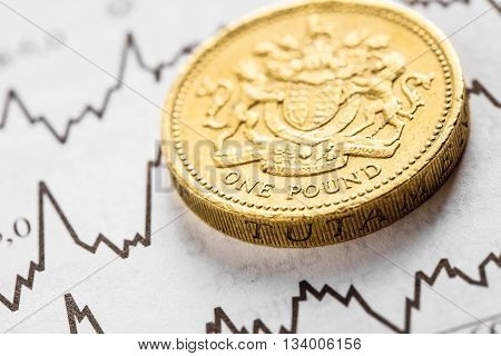 The coin one pound on graphics background. Studio shot