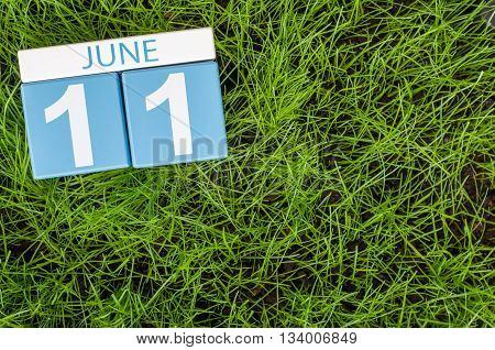 June 11th. Image of june 11 wooden color calendar on greengrass lawn background. Summer day, empty space for text.