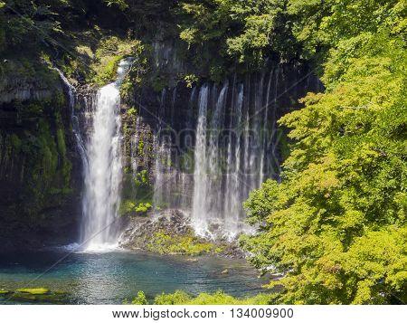 The Beautiful Shiraito Falls