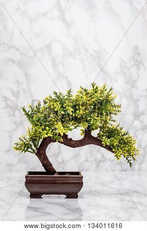 Small Artificial Bonsai Tree