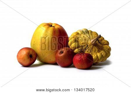 One big and three small apples and one yellow pattypan on white background