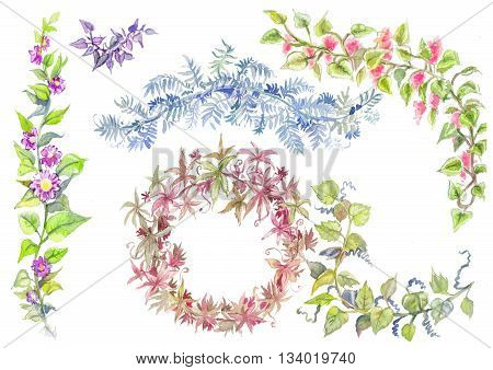 Branches with green leaves isolated on white background. Hand painting on paper. Watercolor liana set. Nature elements collection suit for wedding design.