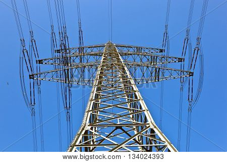 electricity tower with blue sky and bird