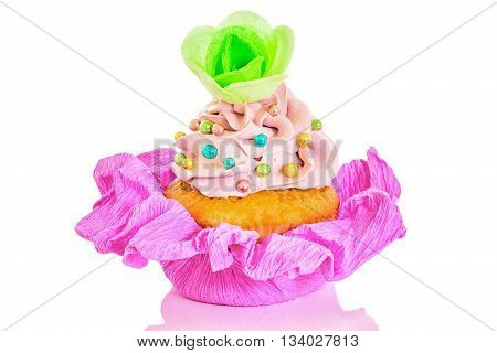 Pink Birthday cupcake with colorful decoration isolated on white background