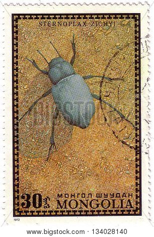 Mongolia - Circa 1972: A Post Stamp Printed In Mongolia Shows A Sternoplax Zichyl Beetle, The Series