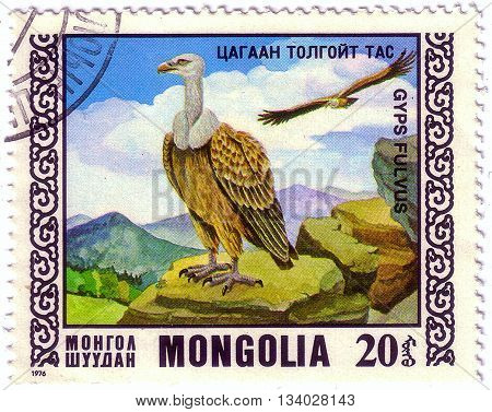 Mongolia - Circa 1976: Stamp Printed By Mongolia, Shows Bird, Griffon Vulture, Circa 1976