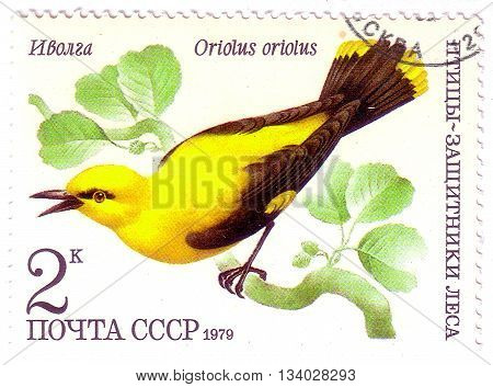 Ussr - Circa 1979: A Stamp Printed In Ussr (russia) Shows A Bird Oriolus Oriolus With The Inscriptio