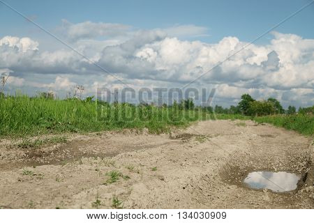 rural road and fields with dandelions in warm summer day, summer landscape beutiful clouds