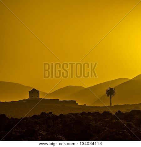 Romantic Sunset With Standalone Trees In Volcanic Area