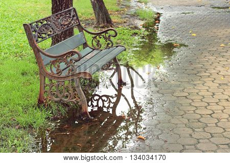 Bench Under The Tree In The Gardens On Rainy Day