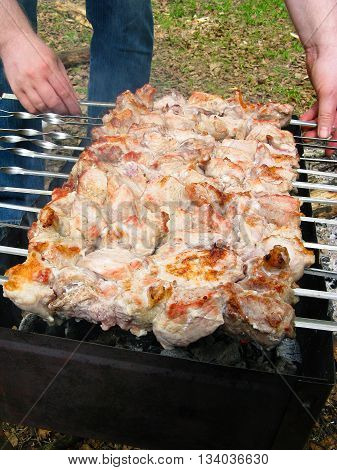 Picnic in the open air. Shashlik (shish kebab barbecue) on nature. Skewer with pork meat fried on brazier