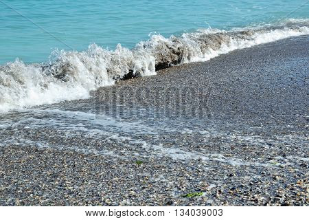 Seashore Blue Water Waves Ocean Sand Shells Summer 1