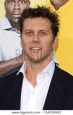 LOS ANGELES - JUN 10:  Hayes MacArthur at the Central Intelligence Los Angeles Premiere at the Village Theater on June 10, 2016 in Westwood, CA