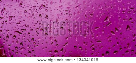 Rainy wet violet abstract eco seasonal natural background with water drops