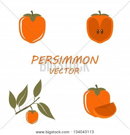 Vector Persimmon icons set on white background