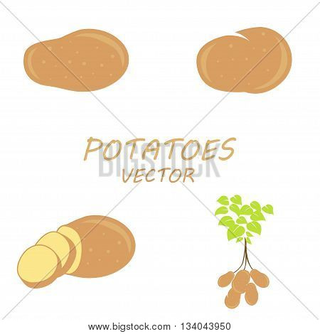 Vector Potatoes icons set on white background