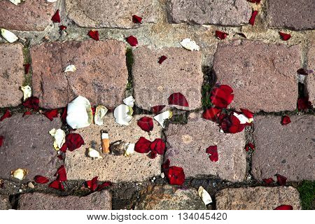 leaves of roses at the floor at a churchyard with cobble stones