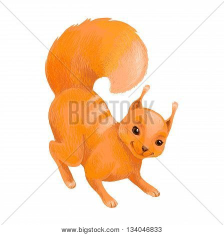 Hand-drawn vector sketch of squirrel standing and looking to you. Suit for for packaging of children's goods book game etc. Cartoon drawing of character in crayons style.