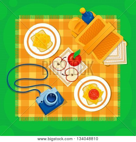 Picnic on the grass vector illustration. Picnic basket, camera, apple, sandwich, checkered tablecloth. Happy weekend