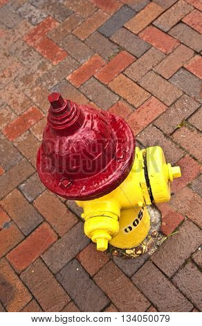 old pedestrian brick paveway in Svannah with hydrant