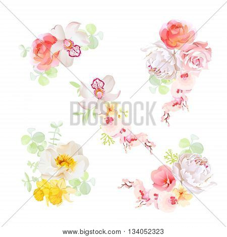 Sweet bouquets of flowers vector design objects. Orchid rose peony daffodil narcissus wildflowers. All elements are isolated and editable.