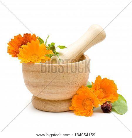 Orange Calendula flowers mortar and pestle isolated