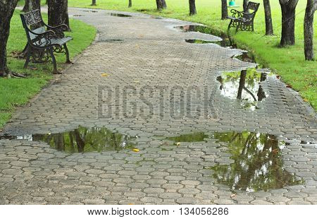 pathway texture in Gardens with rainy day