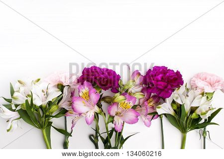 Pink and purple gillyflowers with alstroemeria on the bottom of white background