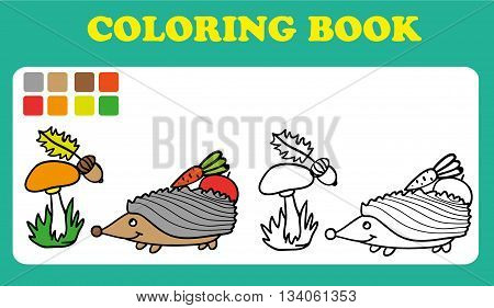Coloring Book or Page Cartoon Illustration of Funny hedgehog coloring book for children vector colorin book pages